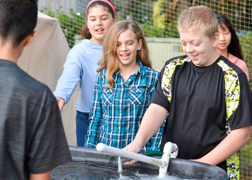 In the News: Middle School Aquaponics